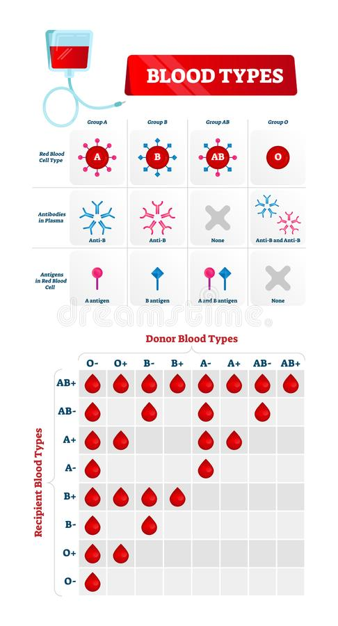 Blood type vector illustration. Educational labeled scheme with donor group royalty free illustration