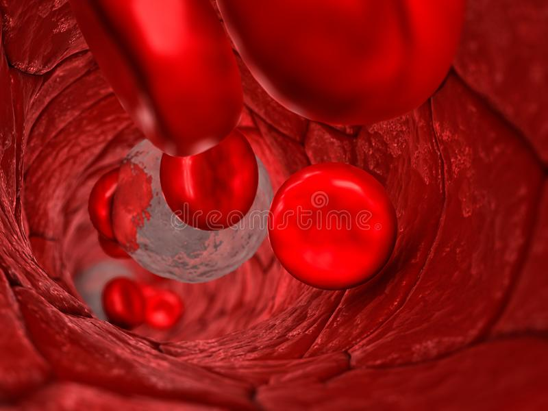 Blood vessel inside - Internal view of a blood vessel with red cells and white cells passing with shallow depth of field. 3D illustration royalty free illustration
