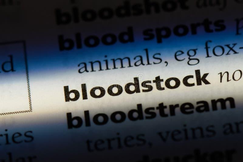 bloodstock immagini stock