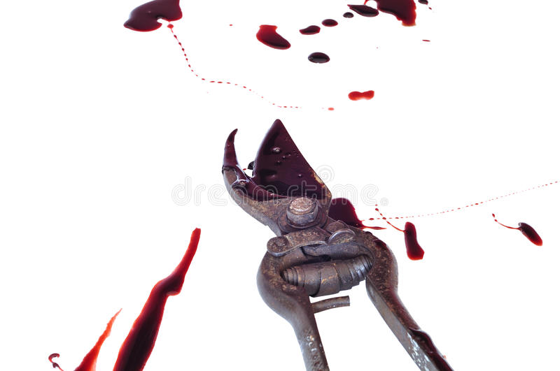 Download Bloody gory pruners stock photo. Image of used, evidence - 14880578