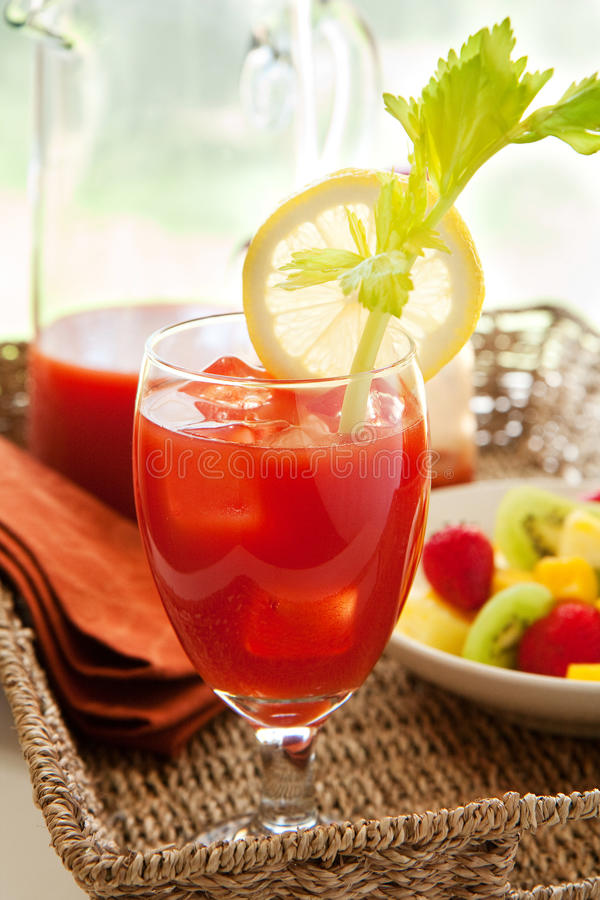 Download Bloody Mary stock image. Image of alcohol, celery, bowl - 14519589