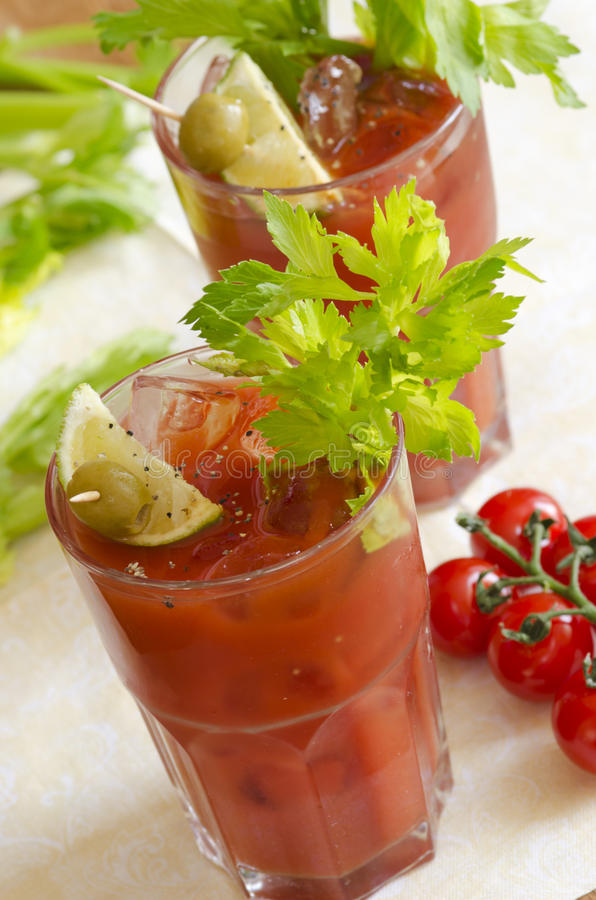 Download Bloody Mary stock photo. Image of vodka, tomatoes, cocktail - 31557732