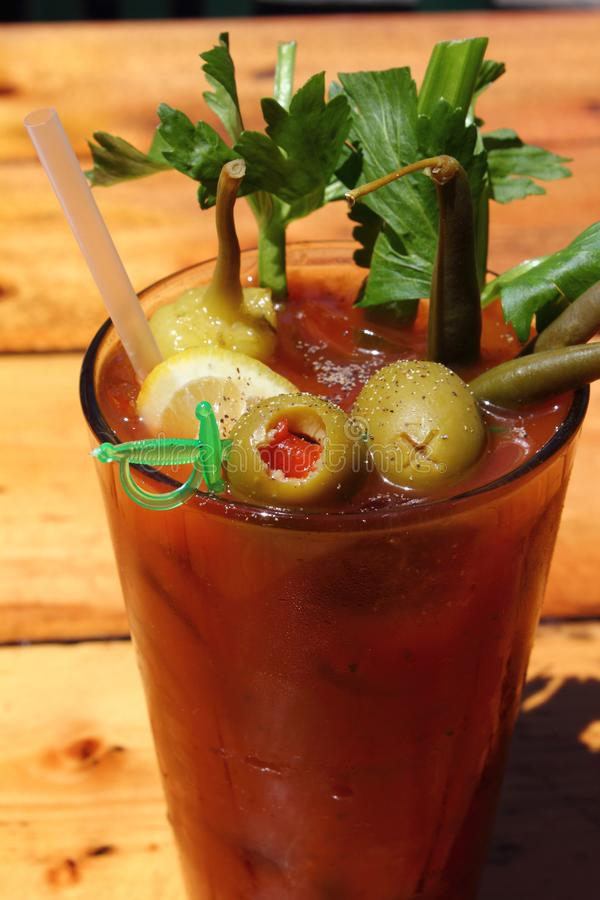 Bloody Mary with Vodka, Olives and Celery royalty free stock images