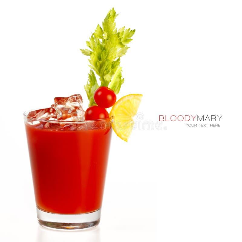Bloody- Marycocktail stockfotografie