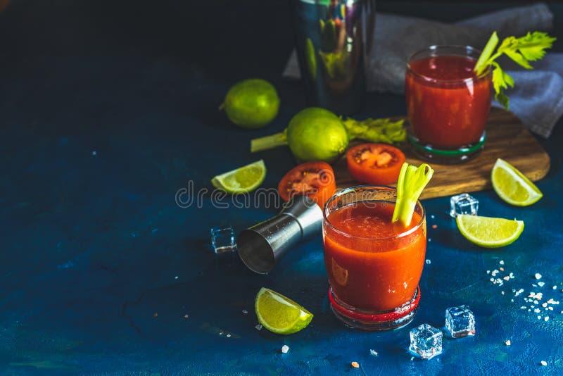 Bloody Marycoctail i deldrinkexponeringsglas royaltyfria foton
