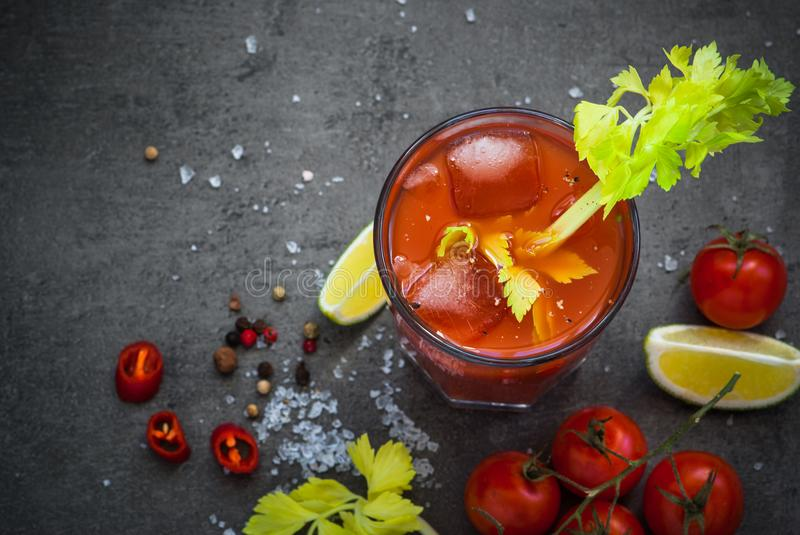 Bloody Marycoktail royaltyfria bilder