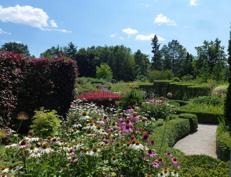 bloom ogród fotografia stock
