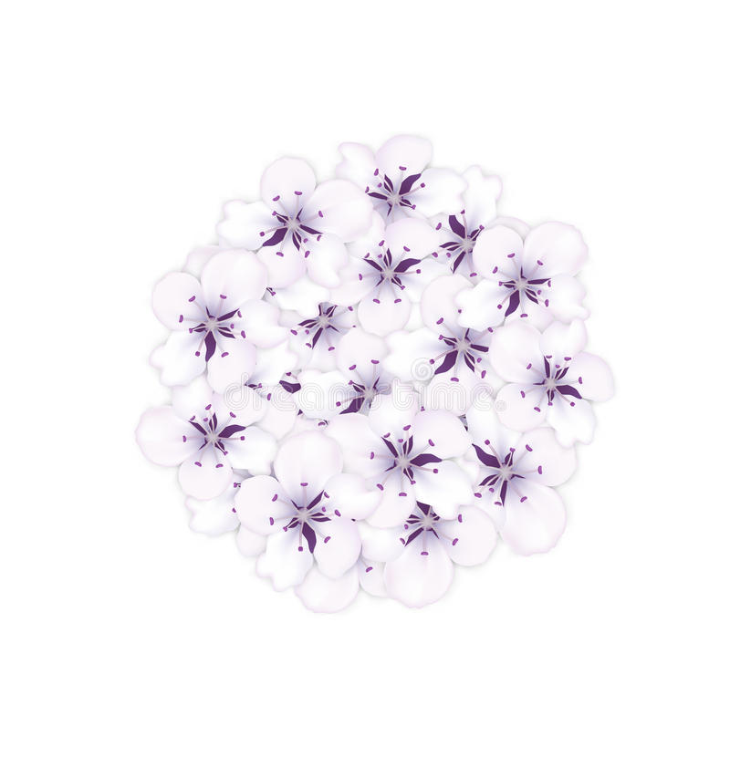 Blooming bouquet sakura blue flowers in round shape. For design holiday Valentines Day - vector vector illustration
