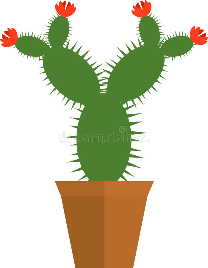 Blooming Cactus in the Pot Flat Design stock illustration