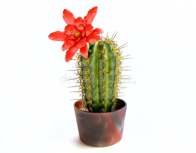Blooming Cactus With Purple Flower royalty free illustration