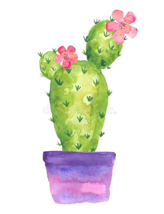 Blooming cactus in a violet pot with flowers, watercolor drawing stock illustration