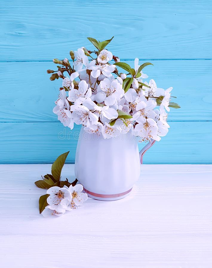Blooming cherry fresh vase on a springtime wooden march stock photos