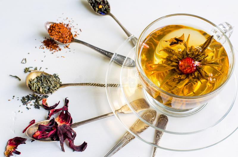 Blooming or flowering tea in a glass cup and spoons with various kinds of tea on white background stock photography