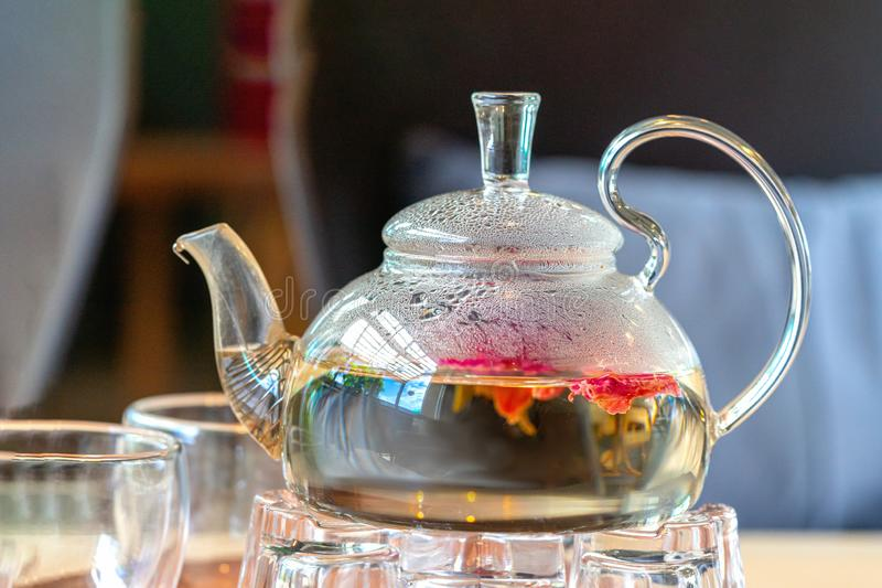Blooming green tea in glass teapot on a wooden table in a bar or coffee shop stock photo