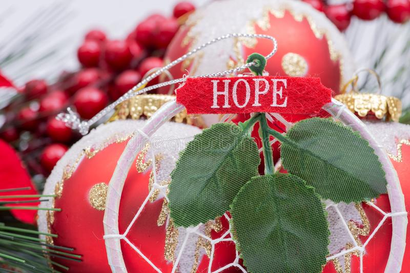 Blooming Holiday Red Poinsettia, Pine and Berry bush and ornament decoration in the form of Christmas tree balls, green leaf. And sign hope stock photo