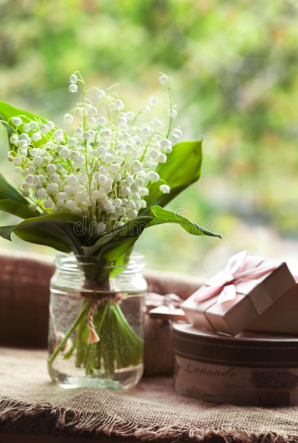 Blooming lily of the valley flowers in glass with stock photography
