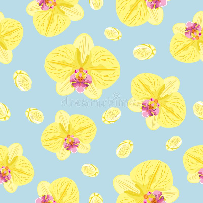 Blooming orchids. Seamless pattern for design stock images