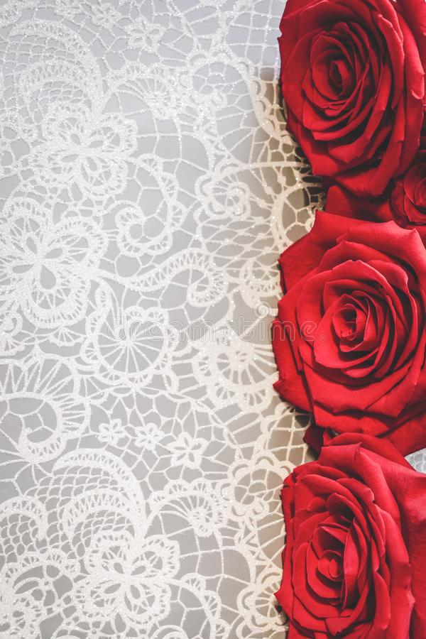 Blooming red roses in white floral lace background. Valentine`s Day or romantic celebration concept, with copy space. Vertical photo of blooming red roses in royalty free stock images