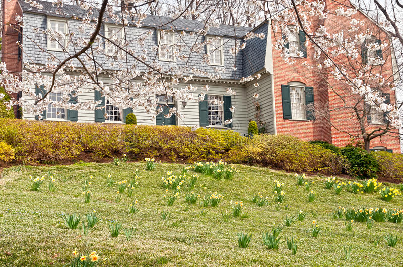 Blooming spring at family house front lawn royalty free stock photo