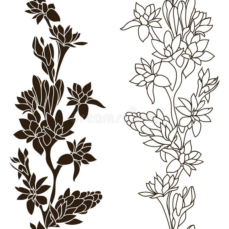Blooming Tuberose stock images