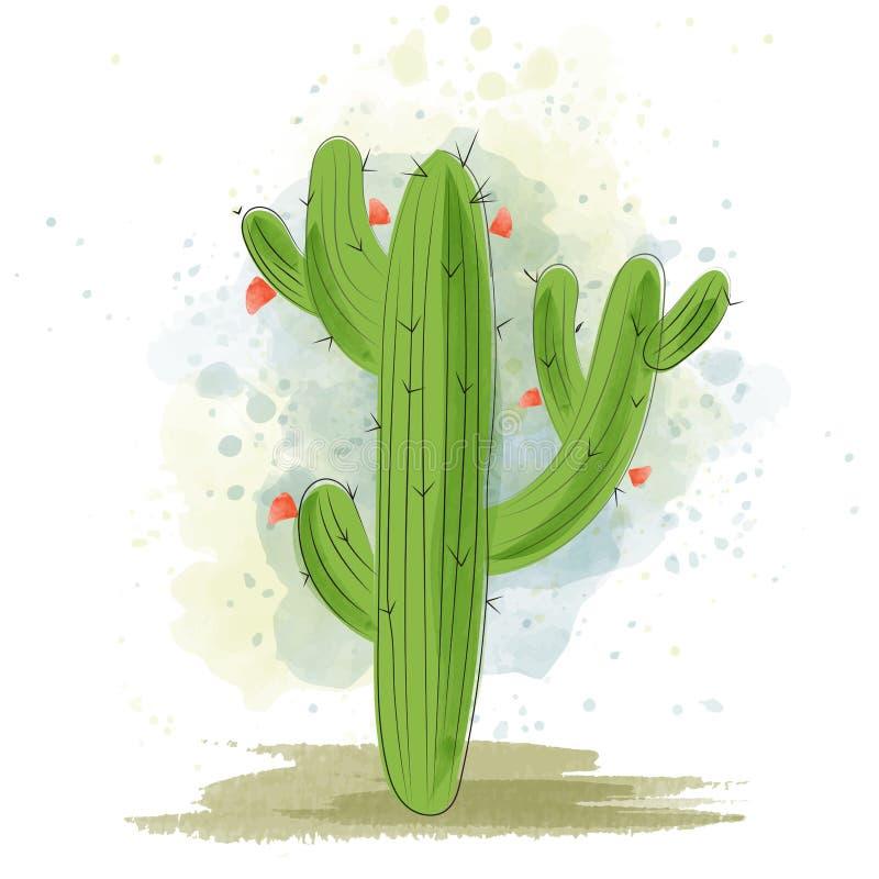 Blooming van waterkleurcactus vector illustratie