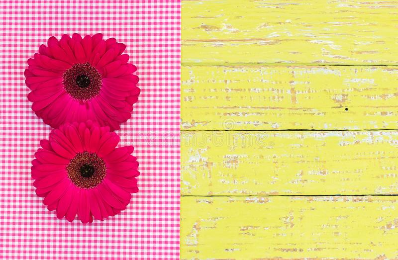 Bloomy decoration with pink gerbera daisy flowers for a flowery greeting card stock photos