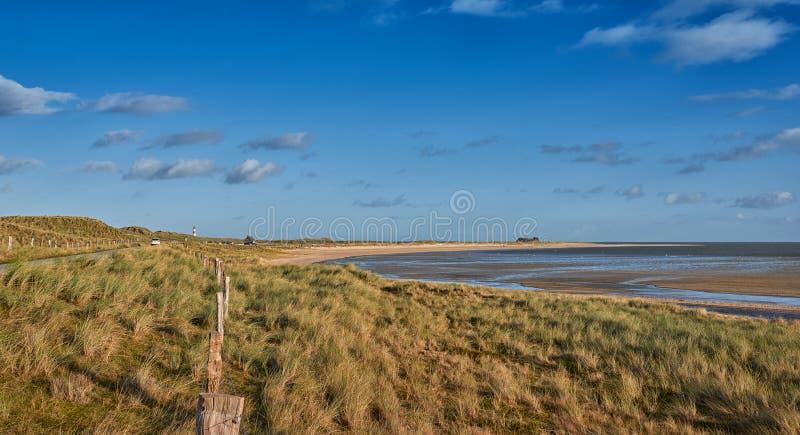 Blootgestelde estuarine moddervlakten at low tide royalty-vrije stock afbeelding