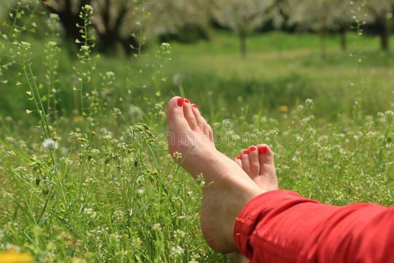 Blootvoetse vrouwelijke voeten op groen gebied stock foto