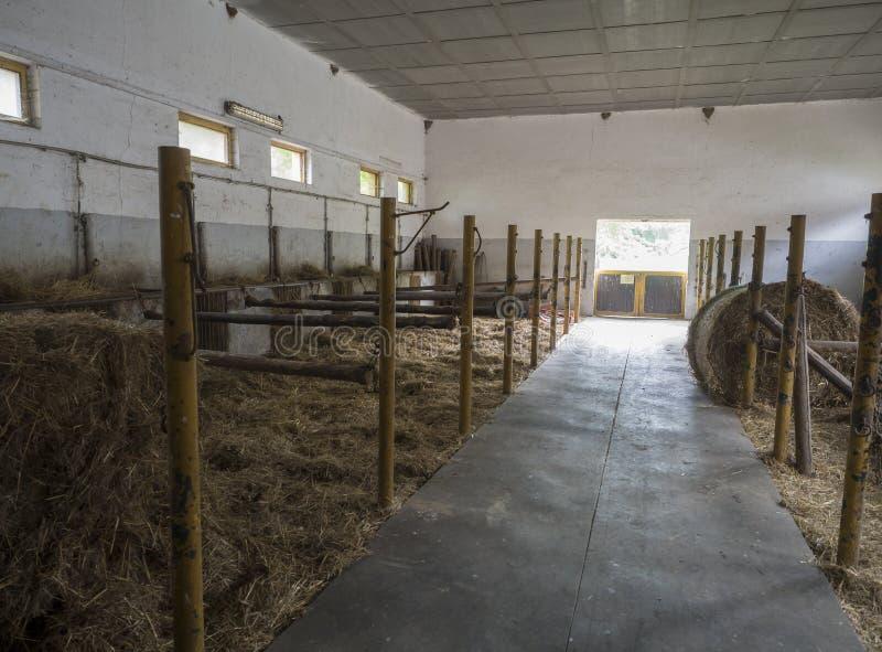Bloque estable de la parada del caballo vacío viejo en la granja histórica Benice imágenes de archivo libres de regalías