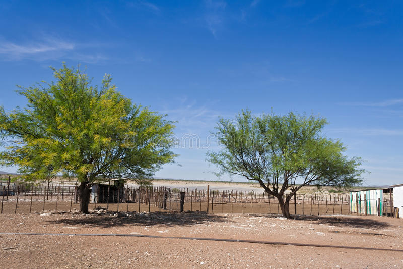Bloquee en una granja de ganado, Namibia foto de archivo