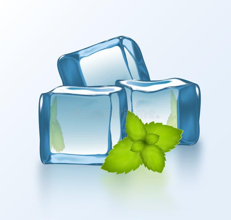 Bloques de hielo del vector con la menta libre illustration