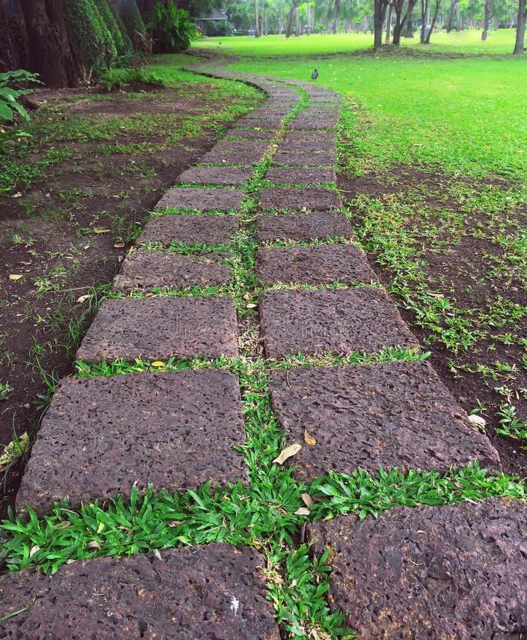 Bloques de piedra de la manera en el parque imagen de archivo