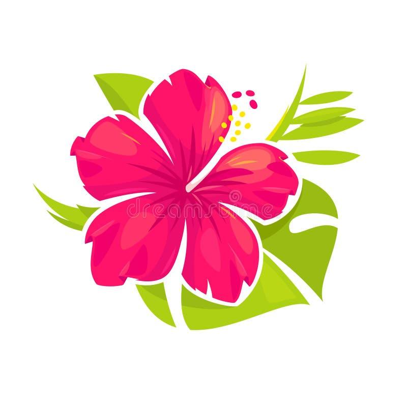 Blosom da flor do hibiscus ilustração royalty free