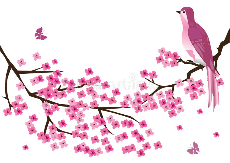 Blossom branches royalty free illustration