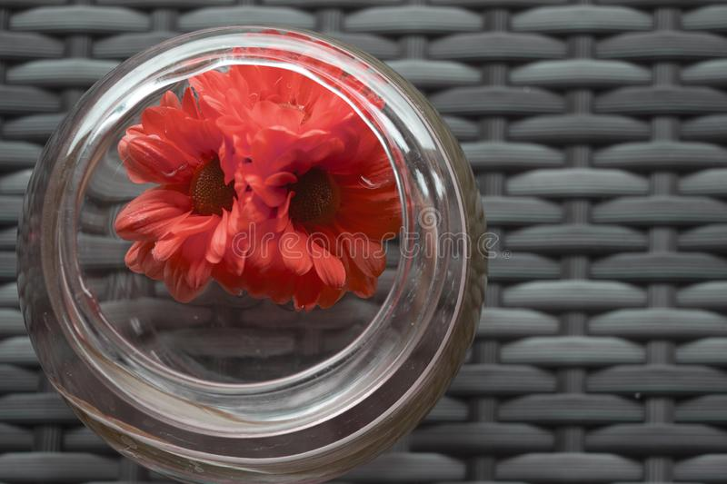 Blossom Red flowers retro style decoration in the round vase stock photo