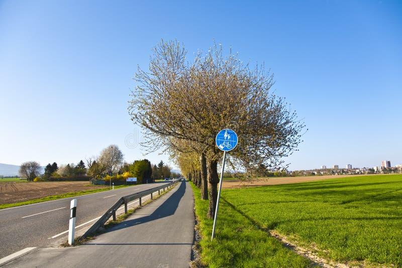 Download Blossoming дерево на улице стоковое изображение. изображение насчитывающей страна - 40586719