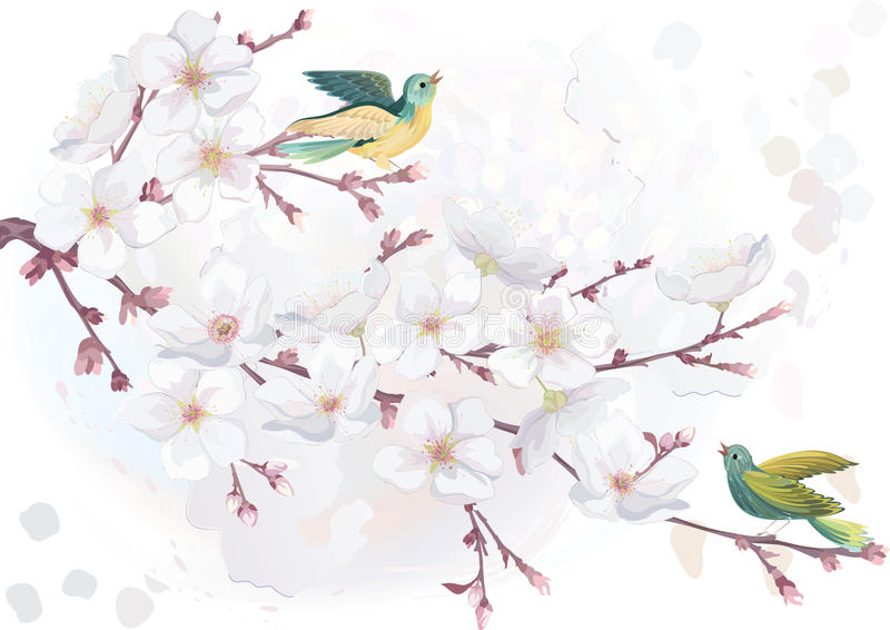 Blossoming cherry tree vector illustration