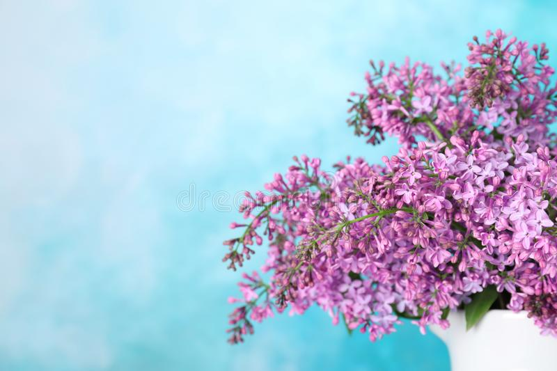 Blossoming lilac flowers in porcelain pitcher against color background, closeup. Space for text stock photography