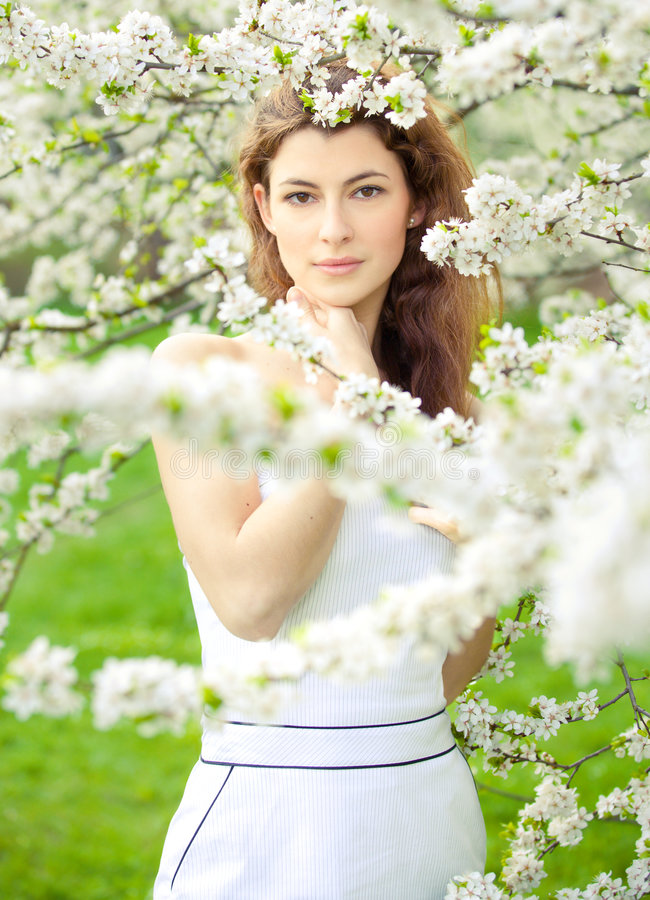 Free Blossoming Spring Stock Photos - 6059623