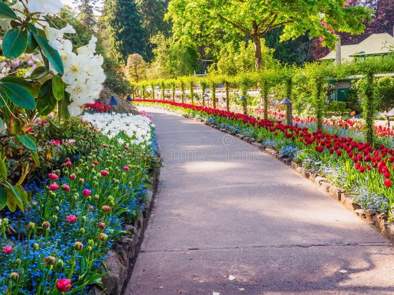 Spring park stock photo