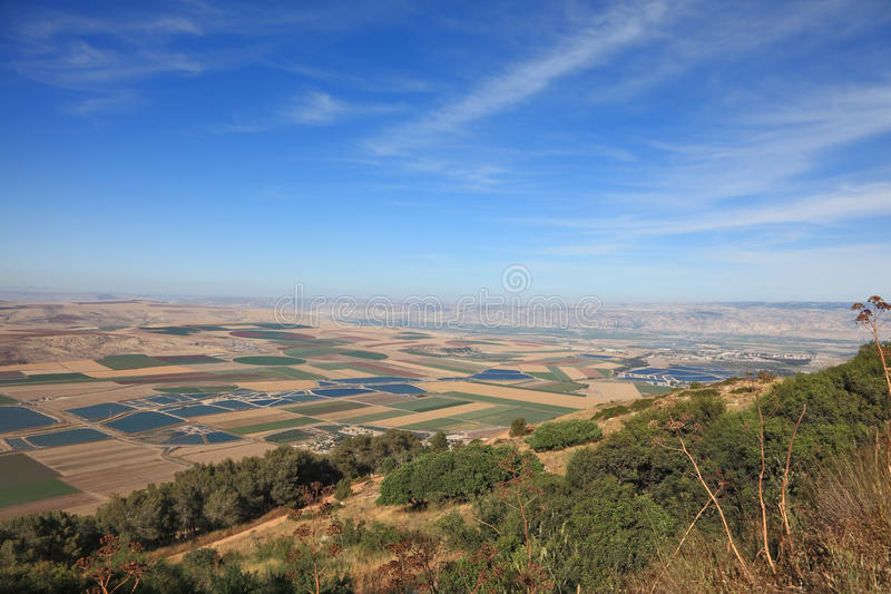 Blossoming valley in the Isreel Valley royalty free stock photos