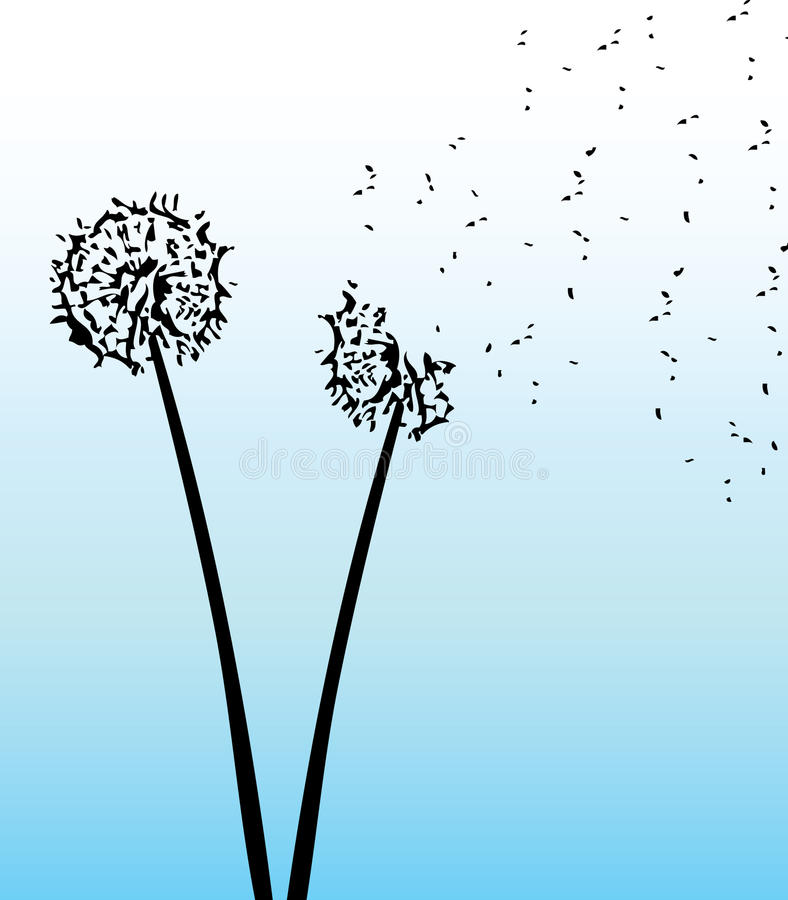 Blow dandelion royalty free stock photos