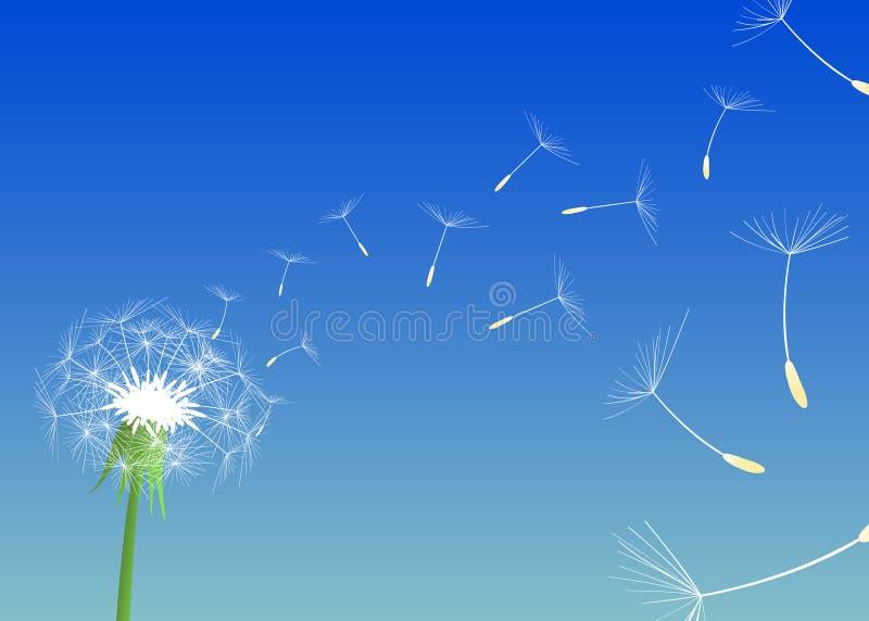 Download Blow Dandelion. Vector Stock Photo - Image: 26407430