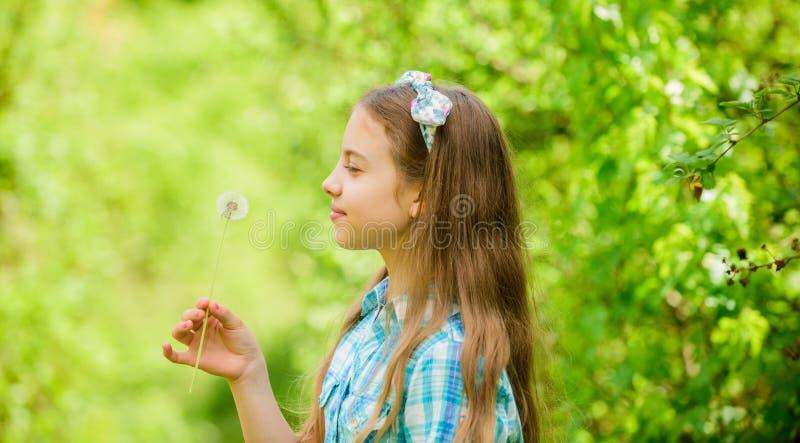 blowball heureux de prise d'enfant petite fille et avec la fleur de taraxacum Beaut? normale Bonheur d'enfance Pissenlit Ressort photo stock