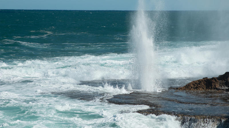 Download Blowholes stock image. Image of blowholes, carnarvon - 78347503