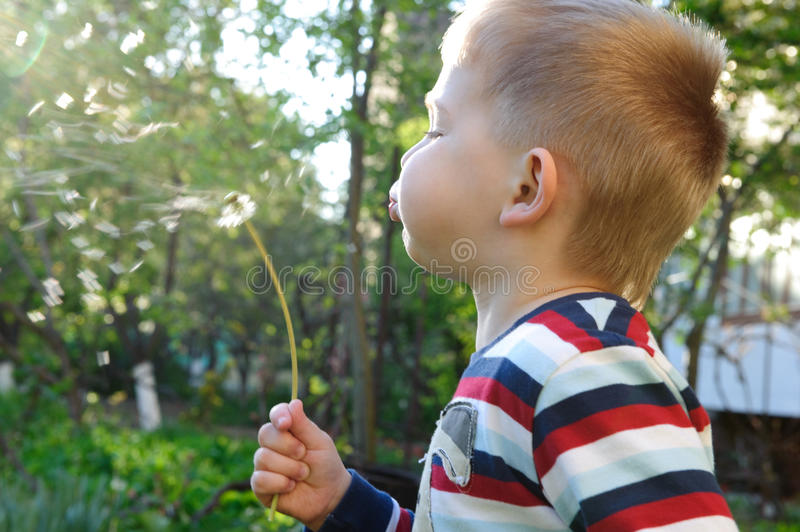 Download Blowing on dandelion stock photo. Image of nature, lips - 24687376