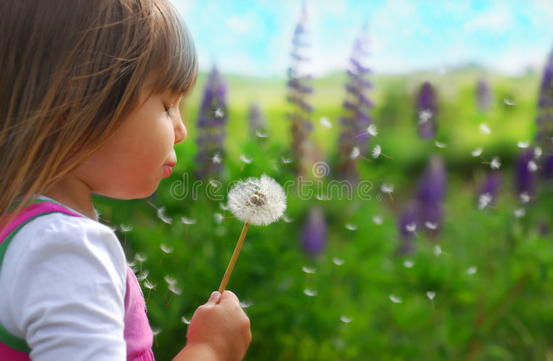 Download Blowing dandelion 3 stock photo. Image of activity, human - 6181552