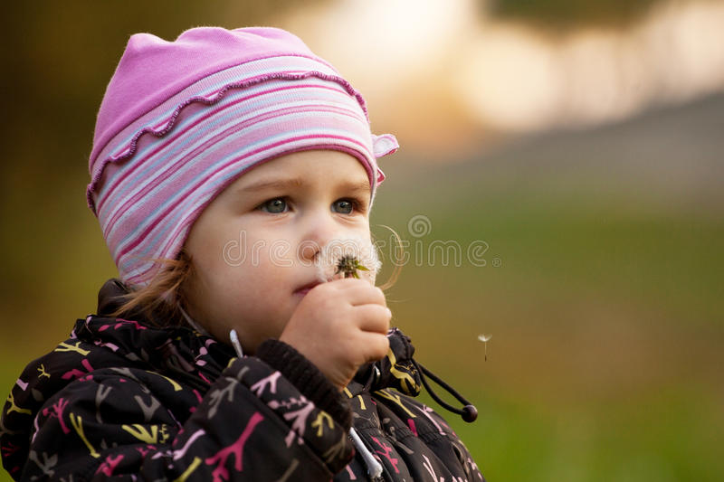 Blowing a dandelion stock images