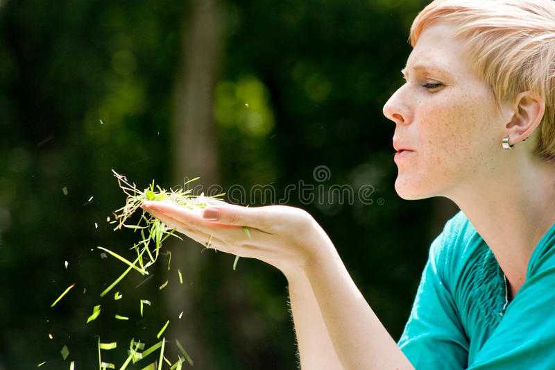 Download Blowing the grass stock photo. Image of years, colorful - 10743974