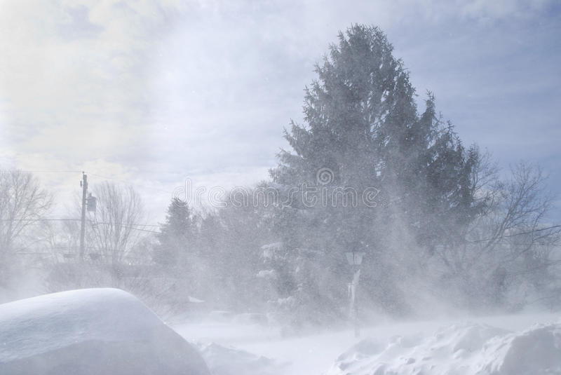 Download Blowing Snow editorial stock image. Image of storm, seasons - 17582969